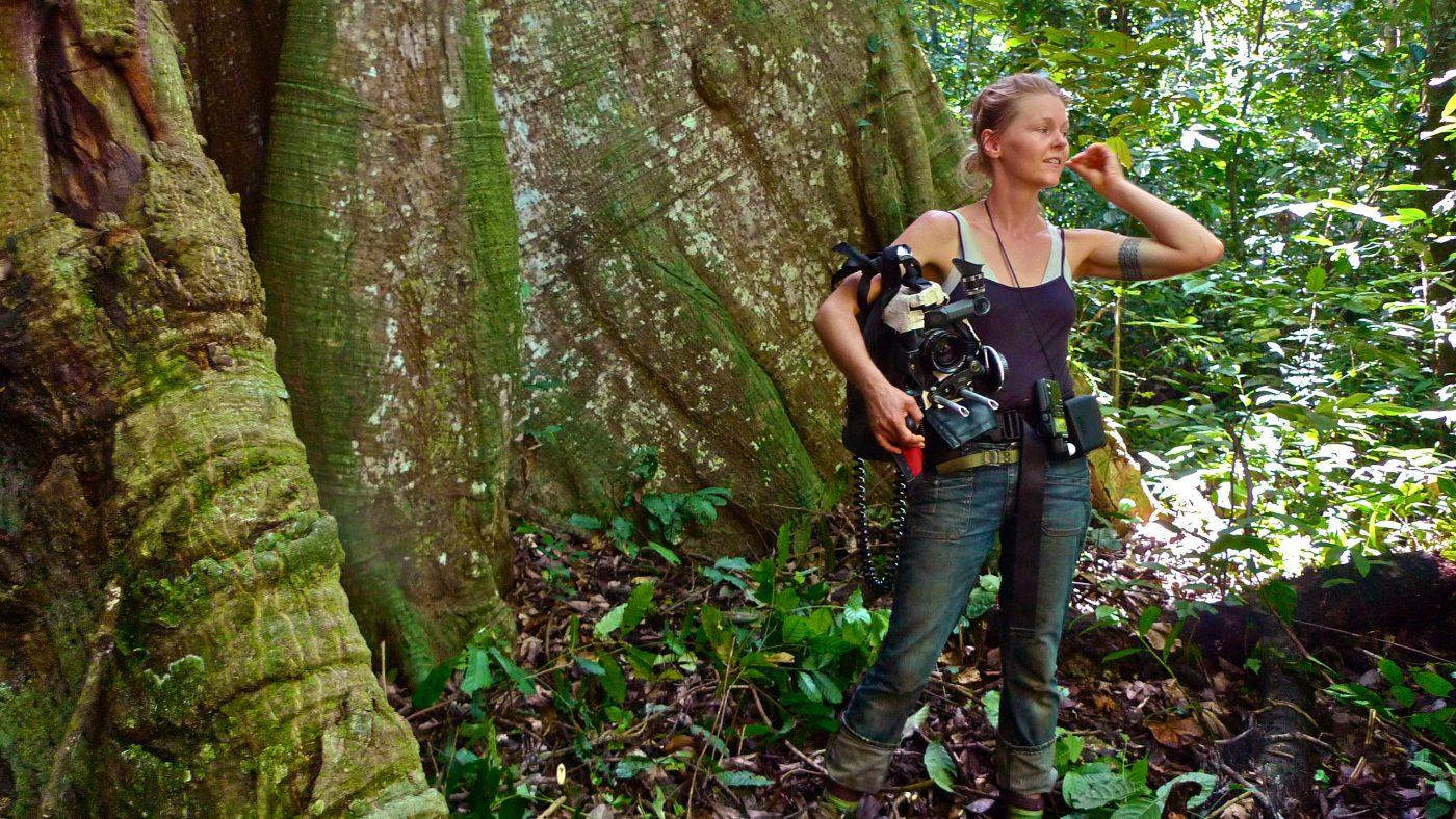 De dansande andarnas skog online dating